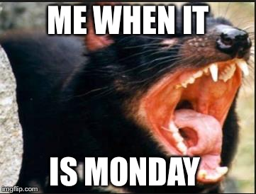 ME WHEN IT IS MONDAY | image tagged in mad face | made w/ Imgflip meme maker