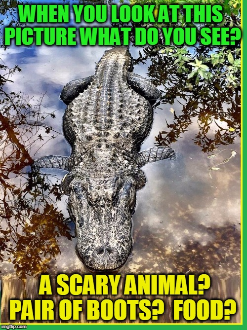 Perception is in the Eye of the Beholder | WHEN YOU LOOK AT THIS PICTURE WHAT DO YOU SEE? A SCARY ANIMAL? PAIR OF BOOTS?  FOOD? | image tagged in vince vance,alligator,perception,animal meme,crocodile | made w/ Imgflip meme maker