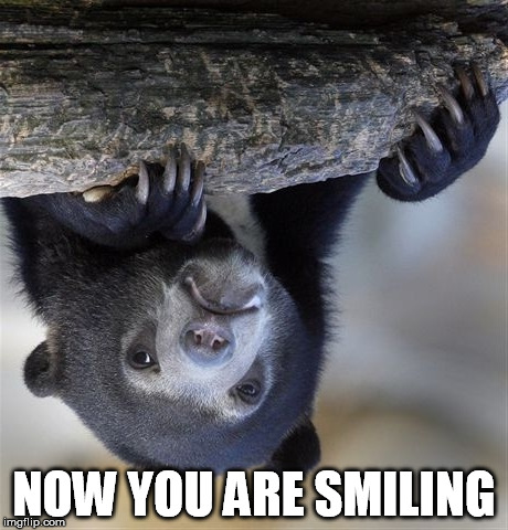 Confession Bear Meme | NOW YOU ARE SMILING | image tagged in memes,confession bear | made w/ Imgflip meme maker