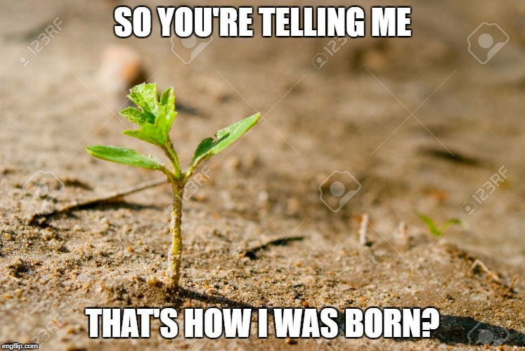 SO YOU'RE TELLING ME THAT'S HOW I WAS BORN? | made w/ Imgflip meme maker