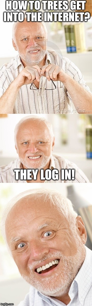 Hide the pun Harold | HOW TO TREES GET INTO THE INTERNET? THEY LOG IN! | image tagged in hide the pun harold | made w/ Imgflip meme maker