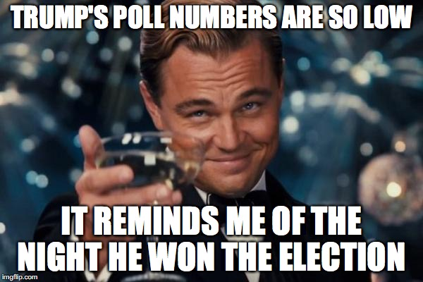 Leonardo Dicaprio Cheers Meme | TRUMP'S POLL NUMBERS ARE SO LOW IT REMINDS ME OF THE NIGHT HE WON THE ELECTION | image tagged in memes,leonardo dicaprio cheers | made w/ Imgflip meme maker
