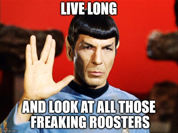 LIVE LONG AND LOOK AT ALL THOSE FREAKING ROOSTERS | image tagged in spock | made w/ Imgflip meme maker