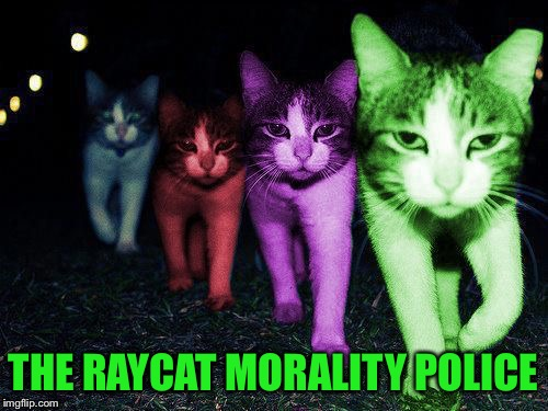 Wrong Neighborhood RayCats | THE RAYCAT MORALITY POLICE | image tagged in wrong neighborhood raycats | made w/ Imgflip meme maker