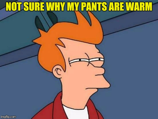 Futurama Fry Meme | NOT SURE WHY MY PANTS ARE WARM | image tagged in memes,futurama fry | made w/ Imgflip meme maker