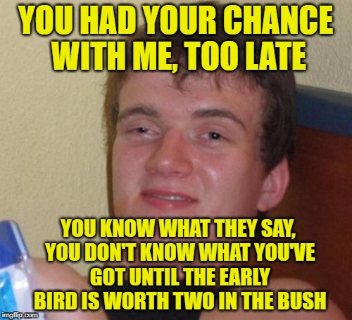 10 Guy Meme | YOU HAD YOUR CHANCE WITH ME, TOO LATE YOU KNOW WHAT THEY SAY, YOU DON'T KNOW WHAT YOU'VE GOT UNTIL THE EARLY BIRD IS WORTH TWO IN THE BUSH | image tagged in memes,10 guy | made w/ Imgflip meme maker