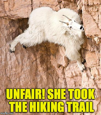 UNFAIR! SHE TOOK THE HIKING TRAIL | made w/ Imgflip meme maker