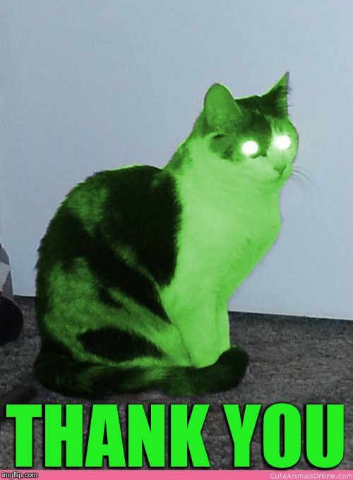 Hypno Raycat | THANK YOU | image tagged in hypno raycat | made w/ Imgflip meme maker