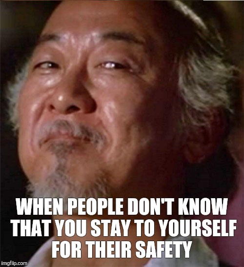WHEN PEOPLE DON'T KNOW THAT YOU STAY TO YOURSELF FOR THEIR SAFETY | image tagged in memes | made w/ Imgflip meme maker