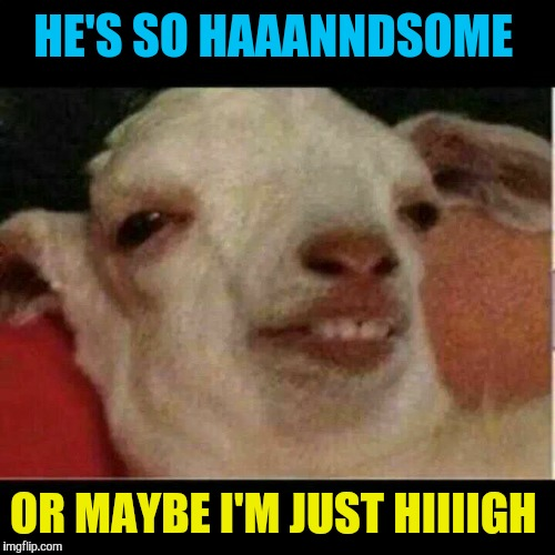 HE'S SO HAAANNDSOME OR MAYBE I'M JUST HIIIIGH | made w/ Imgflip meme maker