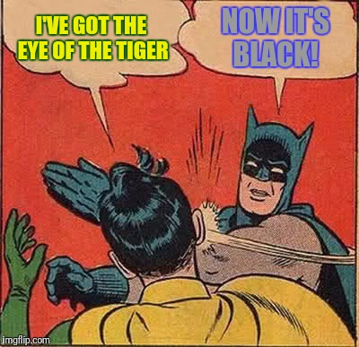 Batman Slapping Robin Meme | I'VE GOT THE EYE OF THE TIGER NOW IT'S BLACK! | image tagged in memes,batman slapping robin | made w/ Imgflip meme maker