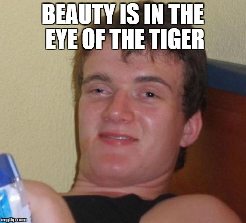 10 Guy Meme | BEAUTY IS IN THE EYE OF THE TIGER | image tagged in memes,10 guy | made w/ Imgflip meme maker