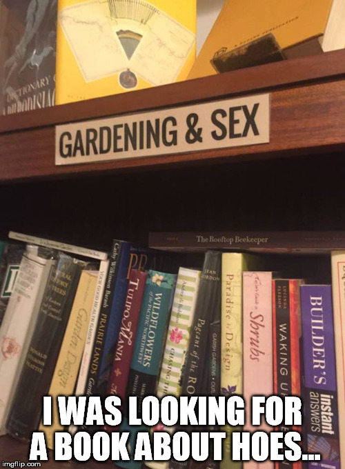 Librarian humor | I WAS LOOKING FOR A BOOK ABOUT HOES... | image tagged in books,library | made w/ Imgflip meme maker