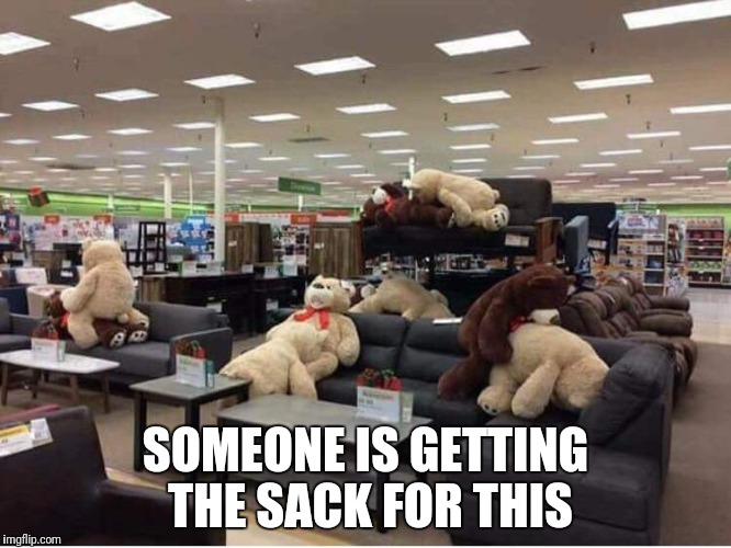 Getting the sack | SOMEONE IS GETTING THE SACK FOR THIS | image tagged in porno teddybears,getting the sack | made w/ Imgflip meme maker