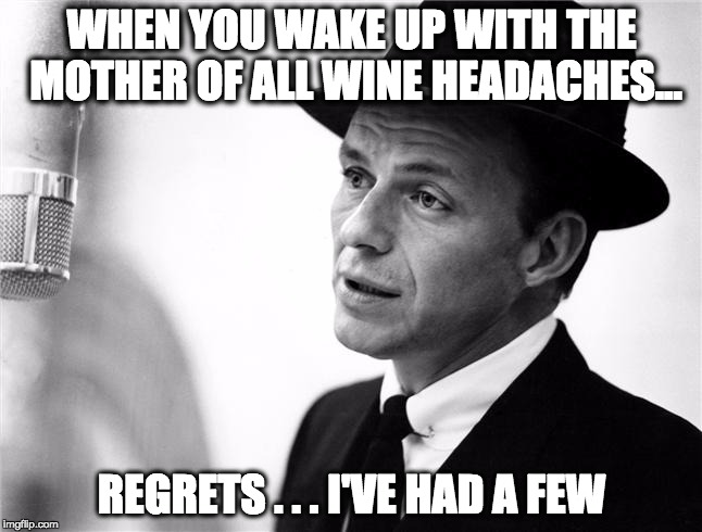 WHEN YOU WAKE UP WITH THE MOTHER OF ALL WINE HEADACHES... REGRETS . . . I'VE HAD A FEW | image tagged in frank wine hangover | made w/ Imgflip meme maker