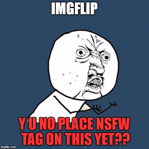 Y U No Meme | IMGFLIP Y U NO PLACE NSFW TAG ON THIS YET?? | image tagged in memes,y u no | made w/ Imgflip meme maker