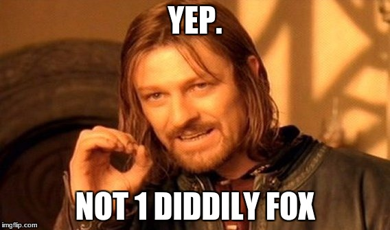 One Does Not Simply Meme | YEP. NOT 1 DIDDILY FOX | image tagged in memes,one does not simply | made w/ Imgflip meme maker