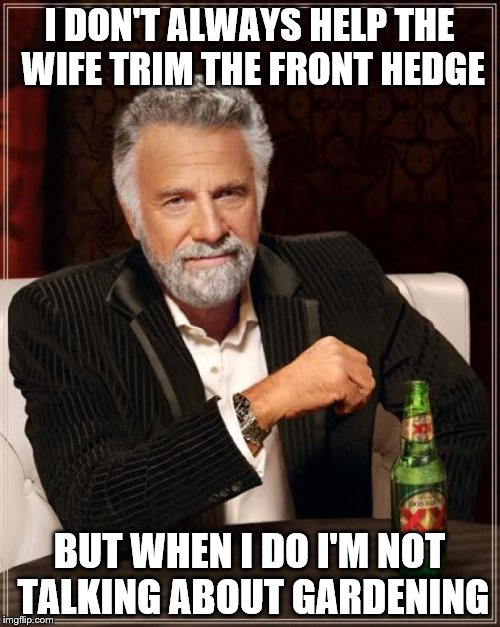 The Most Interesting Man In The World Meme | I DON'T ALWAYS HELP THE WIFE TRIM THE FRONT HEDGE BUT WHEN I DO I'M NOT TALKING ABOUT GARDENING | image tagged in memes,the most interesting man in the world | made w/ Imgflip meme maker