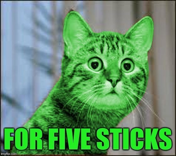 RayCat WTF | FOR FIVE STICKS | image tagged in raycat wtf | made w/ Imgflip meme maker