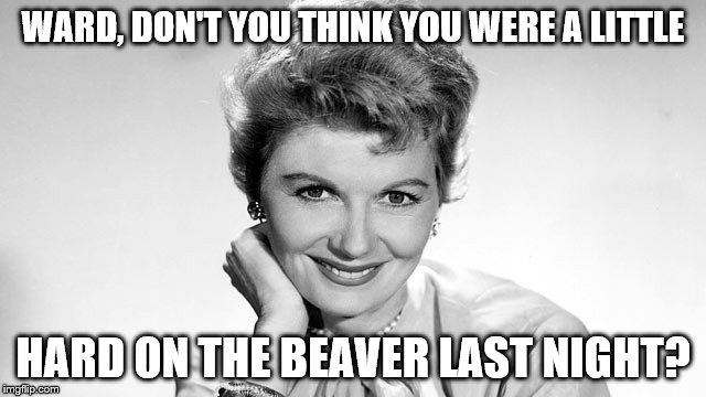 why mrs. cleaver, you're looking well this morning | WARD, DON'T YOU THINK YOU WERE A LITTLE HARD ON THE BEAVER LAST NIGHT? | image tagged in meme,funny | made w/ Imgflip meme maker