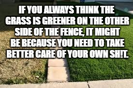 IF YOU ALWAYS THINK THE GRASS IS GREENER ON THE OTHER SIDE OF THE FENCE, IT MIGHT BE BECAUSE YOU NEED TO TAKE BETTER CARE OF YOUR OWN SH!T. | image tagged in grass is greener,sayings,memes,funny,funny memes | made w/ Imgflip meme maker