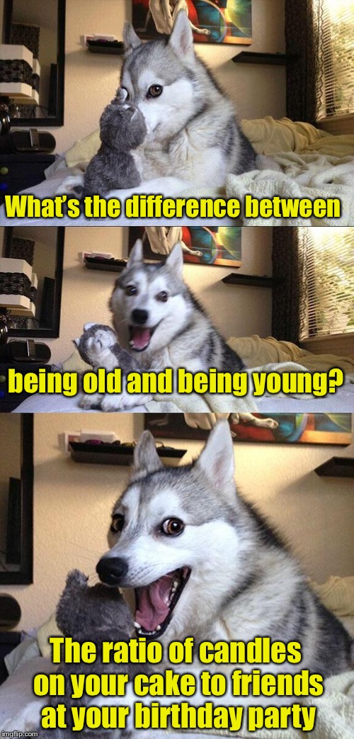 Bad Pun Dog Meme | What's the difference between being old and being young? The ratio of candles on your cake to friends at your birthday party | image tagged in memes,bad pun dog | made w/ Imgflip meme maker