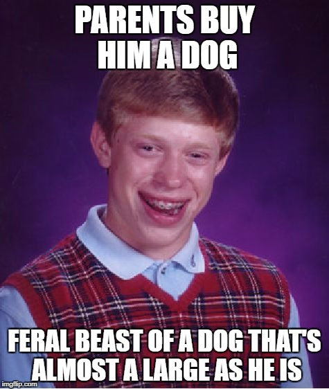 Bad Luck Brian Meme | PARENTS BUY HIM A DOG FERAL BEAST OF A DOG THAT'S ALMOST A LARGE AS HE IS | image tagged in memes,bad luck brian | made w/ Imgflip meme maker