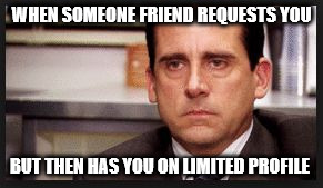 irritated | WHEN SOMEONE FRIEND REQUESTS YOU BUT THEN HAS YOU ON LIMITED PROFILE | image tagged in irritated | made w/ Imgflip meme maker