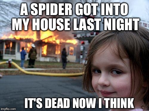 Disaster Girl Don't Give A Shit! | . | image tagged in disaster girl,arachnophobia,spiders,pyro | made w/ Imgflip meme maker