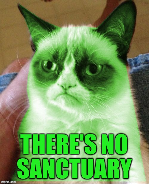 Radioactive Grumpy | THERE'S NO SANCTUARY | image tagged in radioactive grumpy | made w/ Imgflip meme maker