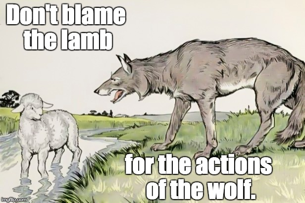 Predators |  Don't blame the lamb; for the actions of the wolf. | image tagged in victims,predators,shaming,accountability | made w/ Imgflip meme maker