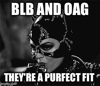 BLB AND OAG THEY'RE A PURFECT FIT | made w/ Imgflip meme maker