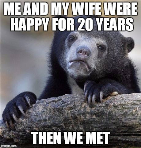 Confession Bear Meme | ME AND MY WIFE WERE HAPPY FOR 20 YEARS THEN WE MET | image tagged in memes,confession bear | made w/ Imgflip meme maker