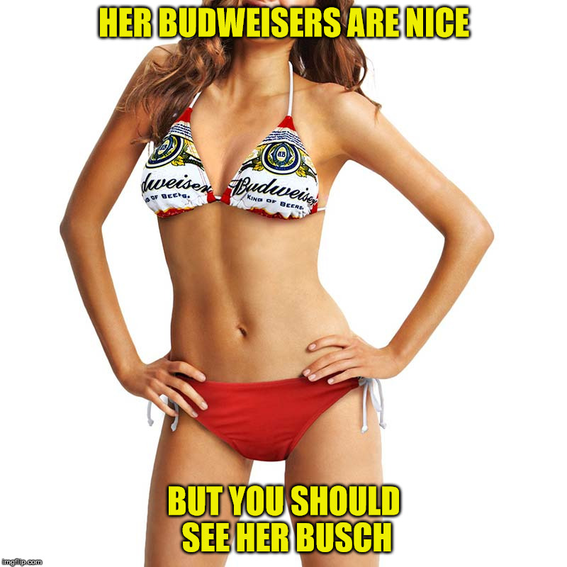 Discussing swimwear here | HER BUDWEISERS ARE NICE BUT YOU SHOULD SEE HER BUSCH | image tagged in bikini,nsfw,beer brands,double endtendres | made w/ Imgflip meme maker