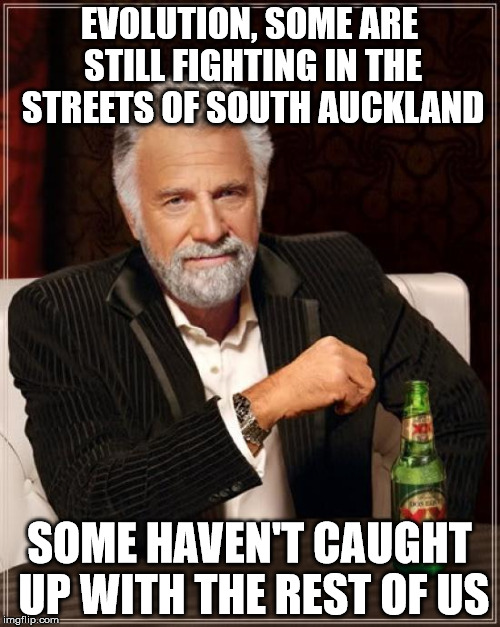 evolution | EVOLUTION, SOME ARE STILL FIGHTING IN THE STREETS OF SOUTH AUCKLAND SOME HAVEN'T CAUGHT UP WITH THE REST OF US | image tagged in memes,the most interesting man in the world | made w/ Imgflip meme maker