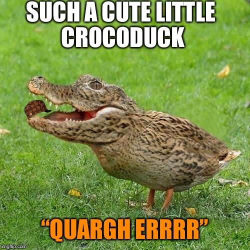 "Awwwww | SUCH A CUTE LITTLE CROCODUCK ""QUARGH ERRRR"" 