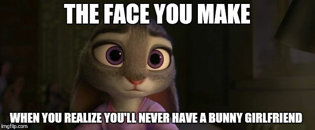 The sad truth | THE FACE YOU MAKE WHEN YOU REALIZE YOU'LL NEVER HAVE A BUNNY GIRLFRIEND | image tagged in judy hopps sad,zootopia,judy hopps,funny,memes | made w/ Imgflip meme maker