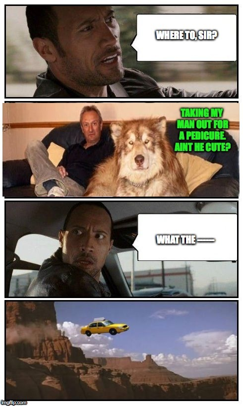 The Rock Gets Some Weird Passengers! | . | image tagged in another day another dollar | made w/ Imgflip meme maker