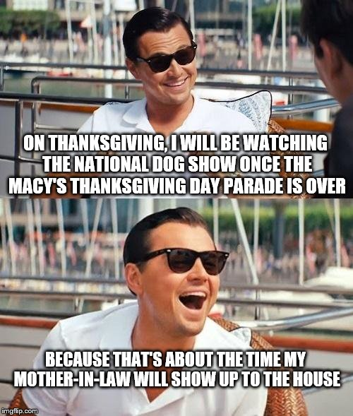 not the National Dog Show I want to watch | ON THANKSGIVING, I WILL BE WATCHING THE NATIONAL DOG SHOW ONCE THE MACY'S THANKSGIVING DAY PARADE IS OVER BECAUSE THAT'S ABOUT THE TIME MY M | image tagged in memes,leonardo dicaprio wolf of wall street,thanksgiving,dog show | made w/ Imgflip meme maker