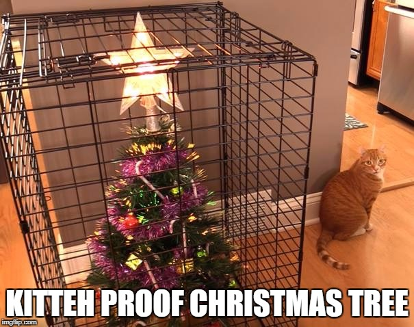 The presents go in, too. | KITTEH PROOF CHRISTMAS TREE | image tagged in memes,funny memes,kitten,cats | made w/ Imgflip meme maker