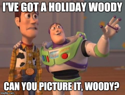Holidays rule | I'VE GOT A HOLIDAY WOODY CAN YOU PICTURE IT, WOODY? | image tagged in holidays,christmas,hanukkah,kwanzaa,new years | made w/ Imgflip meme maker