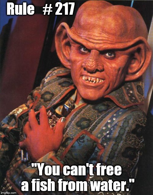 "Ferengi Rule of Acquisition 217 | Rule   # 217 ""You can't free a fish from water."" 