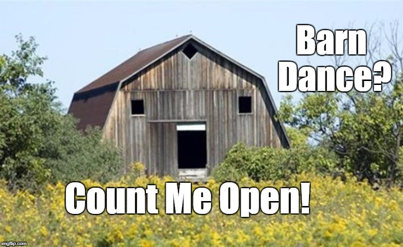 Barn Dance? Count Me Open! | image tagged in barney mcbarnface | made w/ Imgflip meme maker