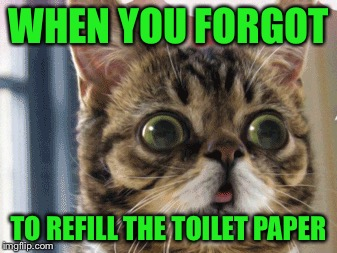 WHEN YOU FORGOT TO REFILL THE TOILET PAPER | image tagged in memes,raycat,toilet paper | made w/ Imgflip meme maker