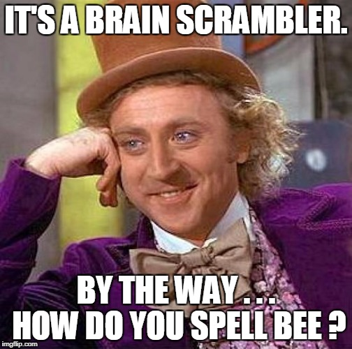 Creepy Condescending Wonka Meme | IT'S A BRAIN SCRAMBLER. BY THE WAY . . . HOW DO YOU SPELL BEE ? | image tagged in memes,creepy condescending wonka | made w/ Imgflip meme maker