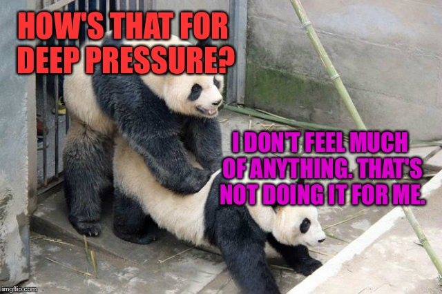 Panda looks for happy ending | HOW'S THAT FOR DEEP PRESSURE? I DON'T FEEL MUCH OF ANYTHING. THAT'S NOT DOING IT FOR ME. | image tagged in panda sex,sex jokes,massage,disatisfied panda,nsfw weekend,hump day | made w/ Imgflip meme maker