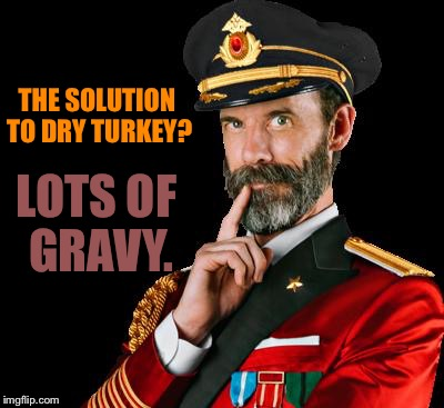 captain obvious | THE SOLUTION TO DRY TURKEY? LOTS OF GRAVY. | image tagged in captain obvious | made w/ Imgflip meme maker