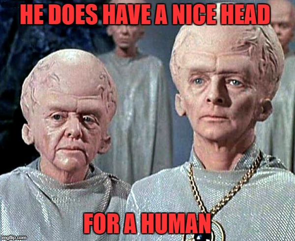 HE DOES HAVE A NICE HEAD FOR A HUMAN | made w/ Imgflip meme maker