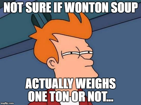 Futurama Fry Meme | NOT SURE IF WONTON SOUP ACTUALLY WEIGHS ONE TON OR NOT... | image tagged in memes,futurama fry,puns,funny,bad pun,chinese food | made w/ Imgflip meme maker