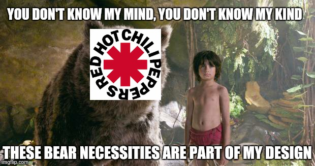 Red Hot Chili Baloo | YOU DON'T KNOW MY MIND, YOU DON'T KNOW MY KIND THESE BEAR NECESSITIES ARE PART OF MY DESIGN | image tagged in baloo,red hot chili peppers | made w/ Imgflip meme maker